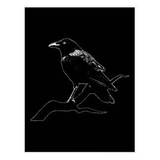 Crow (for dark backgrounds) postcard