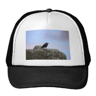 Crow guardian of Stone Henge Trucker Hat