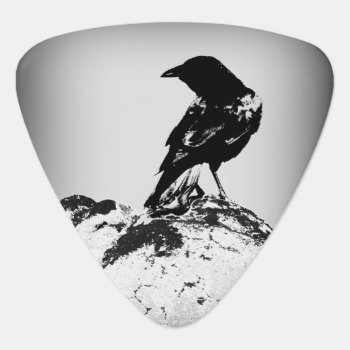 Crow Guitar Pick / Photography By Todd D. Martin by toddsphotography at Zazzle