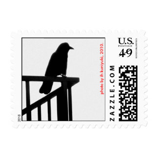 Crow in the Morning Stamps