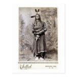 Crow King 1880 Postcard