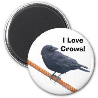CROW ON A CABLE Art Magnet