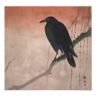 Crow on a Willow Branch Print