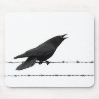 Crow on Barbed Wire Mouse Pad
