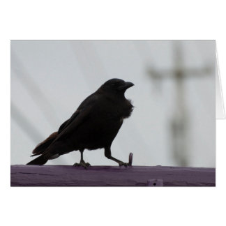 Crow on Purple - Frameable Art Cards