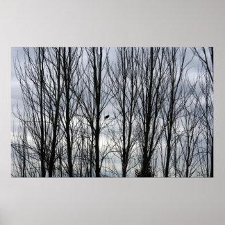 Crow Season Poster