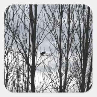 Crow Season Square Sticker
