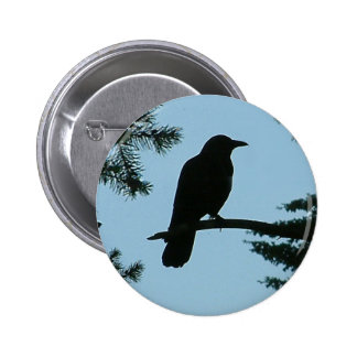 Crow Sitting in Tree Pinback Button