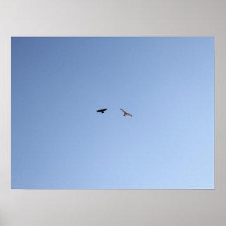 Crow Versus Hawk II Poster