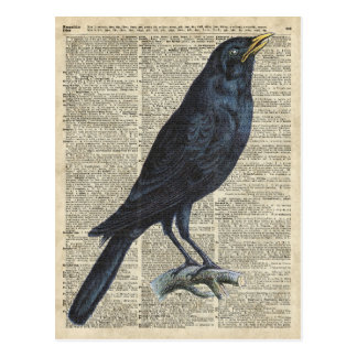 Crow Vintage Illustration At Old Encyclopedia Page Postcard