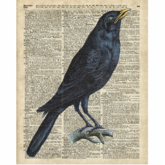 Crow Vintage Illustration At Old Encyclopedia Page Statuette