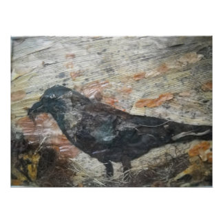 Crow with wild Food Poster