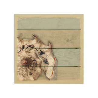 Crown Conch Wood Print