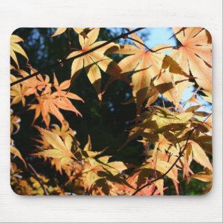 Crown - Maples - Autum Colors Mouse Pad