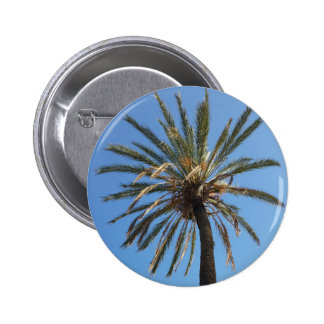 crown of a palm tree button