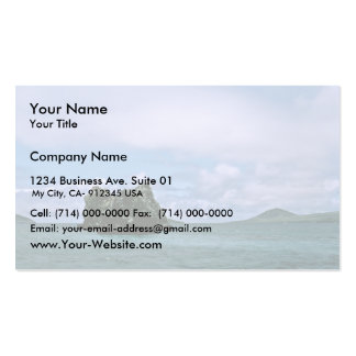 Crown of Thorns Reef, Galapagos Isl. Double-Sided Standard Business Cards (Pack Of 100)