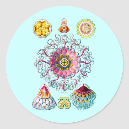 Crown or Helmet Jellyfish Classic Round Sticker