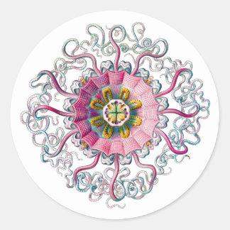 Crown or Helmet Jellyfish Classic Round Sticker