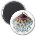 Crown or Helmet Jellyfish Magnets