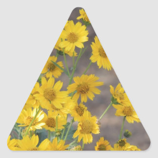 Crownbeard de oro pegatina triangular