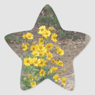 Crownbeard de oro pegatina en forma de estrella
