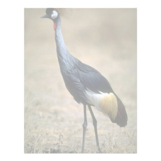 Crowned Crane Letterhead
