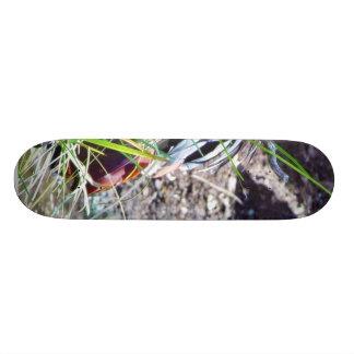 Crowned Cranes Skate Board
