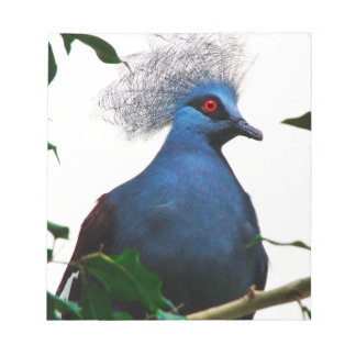 Crowned Pigeon Notepad