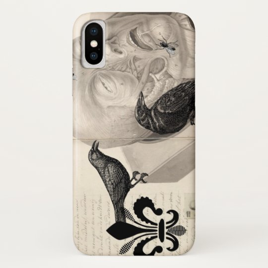 Crows and corpse blackberry case