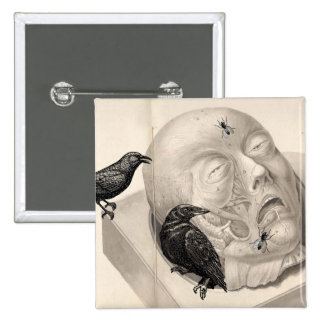 Crows and corpse pin