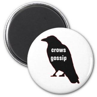Crows Gossip Magnet
