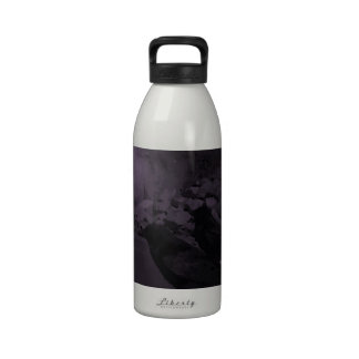 Crows in black and white reusable water bottles
