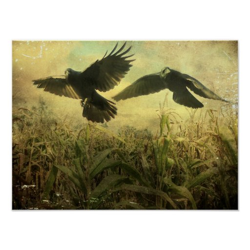 Crows Of The Corn Poster