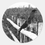 Crows Round Sticker