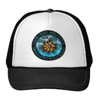 CRPS / RSD World of Fire & Ice Logo Hat