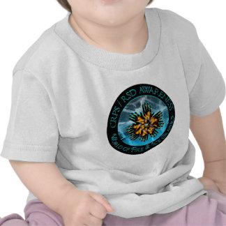 CRPS RSD World of Fire Ice Logo Shirt