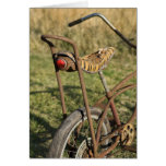 Crucero de ciclo del plátano del ciclo de la bicic tarjetas