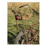 Crucero de ciclo del plátano del ciclo de la bicic postales