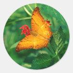crucero Malasia de las mariposas Pegatinas Redondas