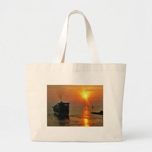 Cruise ship leaving Puerto Vallarta Bags