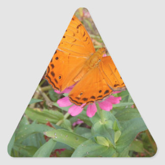 Cruiser butterfly from New Guinea Triangle Sticker