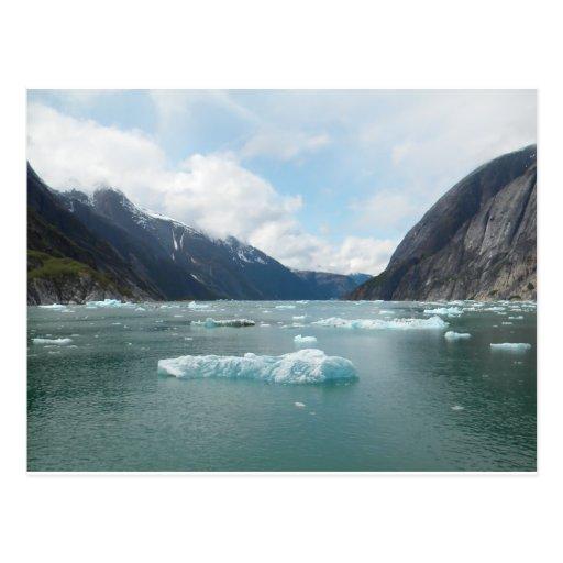 Cruising Alaska Inside Passage Postcard