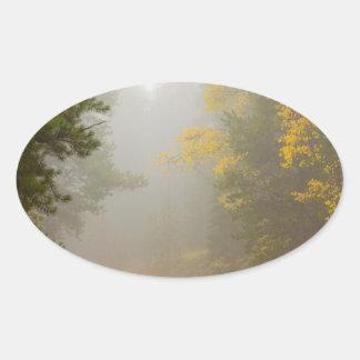 Cruising Into Autumn Fog Oval Sticker