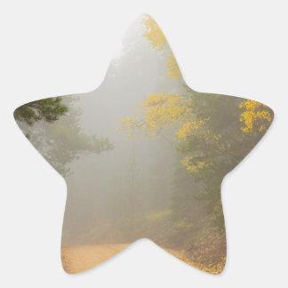 Cruising Into Autumn Fog Star Sticker