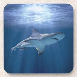 Cruising Shark Drink Coaster
