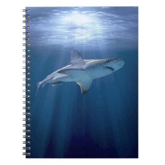 Cruising Shark notebook