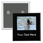 Cruising Tufted Duck 2 Inch Square Button