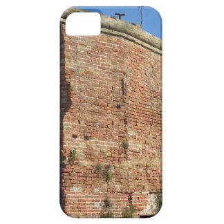 Crumbling brick wall iPhone SE/5/5s case
