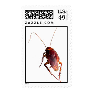 Crunchy Cockroach Stamps