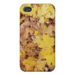 Crunchy Leaves iPhone 4 speck case Cover For iPhone 4